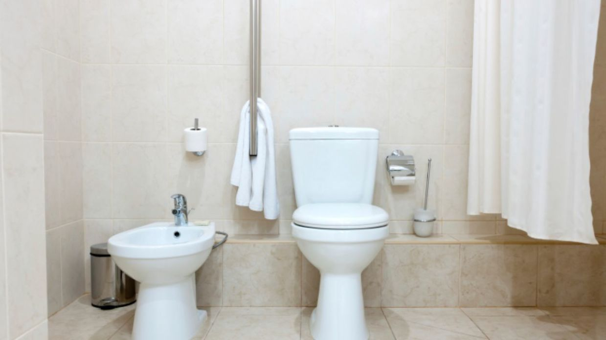 Cómo Instalar Sanitarios De Baño Bricomanía